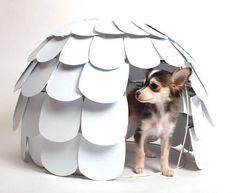 Artichoke Dog House by Sherry Leung
