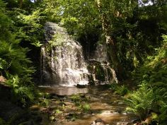 Folly Dolly Falls near Meltham after torrential rain by Andrew O'Connor