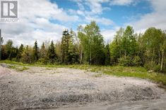 Parcel 045-120 Elizabeth Street in Corner Brook: Vacant Land for sale : MLS®# 1165834