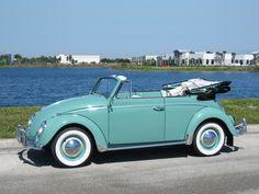 VW Coccinelle.                                                                                                                                                                                 More