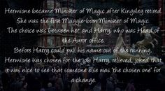 Harry Potter Head Canons...I really love the idea of this one.