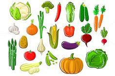 Assorted farm vegetables by seamartini on @creativemarket