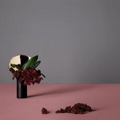 cattleya + currants @official_rosenthal   Photo: Attila Hartwig @attilahartwig   Concept: Olaf Borchard @oloveny
