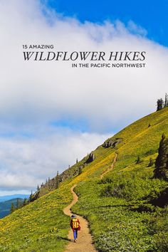 Best Hikes to See Pacific Northwest Wildflowers (Oregon and Washington) - - Summer brings the sun and wildflowers to the PNW! Here is a list of the Best Hikes to See Pacific Northwest Wildflowers in Oregon and Washington. Oregon Travel, Travel Usa, Oregon Hiking, Portland Oregon, Seattle Hiking, Seattle Vacation, Oregon Vacation, Places To Travel, Places To See