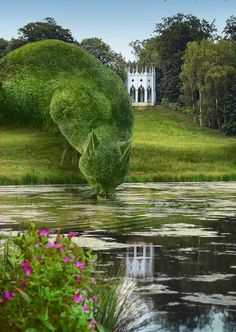 Topiary Cat, done by John Brooker, a retiree aged 75 who lives in Norfolk, UK. Topiary Cat Drinking from a Lake by Rich Saunders Topiary Garden, Parcs, Dream Garden, Lake Garden, Yard Art, Belle Photo, Beautiful Gardens, Garden Landscaping, Garden Sculpture