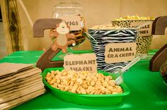 Safari / Jungle Birthday Party Ideas | Photo 1 of 48 | Catch My Party
