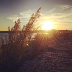 Saying goodbye to summer #austin #texas #atx #sunset #beach #lakeside #sun #nature #windy #instagood #landscape #lensflare #laketravis #park #summer #fall #winter #goodbye | by larkspurlazuli