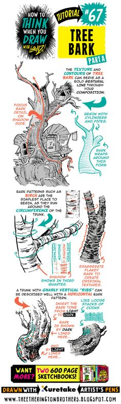See below for today's tutorial, which looks at how to THINK When you draw  TREE BARK. I recommend you use this tutorial in conjunction wit...