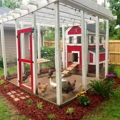 Red coop and door. But please give those chickens something to do.  All the fun is outside their yard.