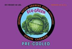 Fla-Green Green Cabbage 12x18 Giclee on canvas