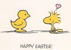 feiern My Front Porch porch Article Body: I love my home. Easter Cats, Hoppy Easter, Easter Funny, Peanuts Cartoon, Peanuts Snoopy, Charlie Brown Und Snoopy, Woodstock Bird, Thanksgiving Cartoon, Thanksgiving Wallpaper