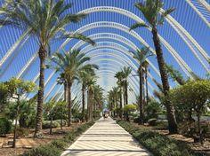 Ciutat de les Arts i les Ciències-Valencia (Spain)