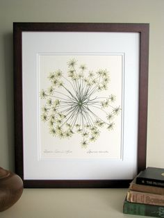 Pressed flower print 11x14 double matted by FlatFlowerDesigns