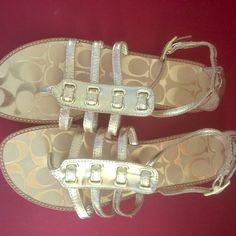 Coach metallic gold sandals. Coach metallic gold gladiator style sandals. Coach Shoes Sandals