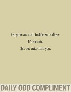 """Penguin Walk"""