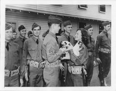 Lovely Michele Morgan photographed at Fort Ord as she presented three of her Siamese kittens to the 7th Division of the U.S. Army as mascots.