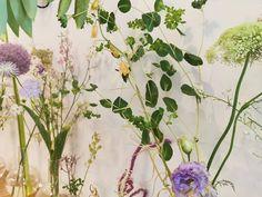 Scrapbook, Fruit, Plants, Instagram, Scrapbooking, Plant, Planets, Guest Books, Scrapbooks