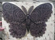 Moth: A New Woodcut Print from Tugboat Printshop wood prints wood posters and prints moths illustration butterflies
