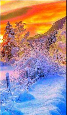 Winter Szenen, I Love Winter, Winter Sunset, Winter Magic, Winter Pictures, Nature Pictures, Snow Scenes, Winter Beauty, Jolie Photo