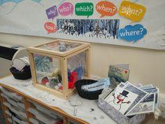 winter Curiosity cube Classroom Layout, New Classroom, Classroom Setting, Classroom Ideas, Curiosity Approach Eyfs, Curiosity Box, Reggio Emilia Classroom, Writing Area, Little Learners