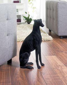 Flock dog black