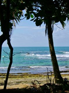 Welcome to Ocean View Saturday! Let's sit back and do absolutely nothing today! #beach #costarica