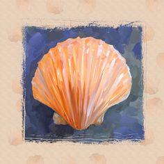 seashell-i-grunge-with-border-jai-johnson.jpg (900×900)