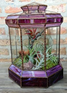 Air Plant Terrarium Kit And Stained Glass Inspiration - My Magnificent Ideas Stained Glass Lamps, Stained Glass Designs, Stained Glass Projects, Stained Glass Patterns, Stained Glass Windows, Mosaic Glass, Window Glass, Fused Glass, Mini Terrarium