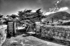 An old weathered tree crosses the entrance into the graveyard Multiple Exposure, Black N White, Hdr, Mount Rushmore, Entrance, Community, Mountains, World, Dynamic Range