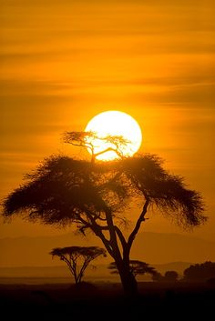 Sunrise in Amboseli National Park, Kenya... Been here, hard to believe but it is a much better sun set and rise in person