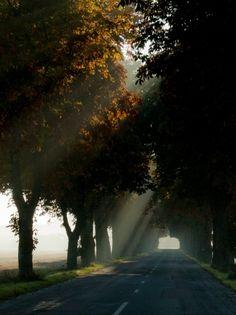 #Nature #landscape #roads #autumn