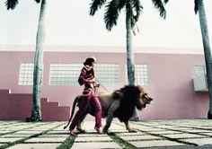 Светская львица на прогулке со львом. Автор: Esther Haase.