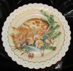 Vintage Aesthetic Movement  Austrian Porcelain Plate Marked BSM Beautiful ! #BSMBecherStarkMerklin