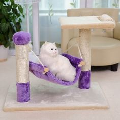 Cool Cat Toys, Cat Gym, Diy Cat Tree, Wood Cat, Cat Hammock, Cat Scratching Post, Cat Scratcher, Kittens Playing, Cat Accessories