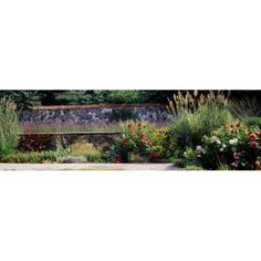 Flowering plants in a garden Biltmore Estate Asheville North Carolina USA Canvas Art - Panoramic Images (12 x 39)