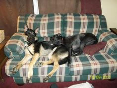 sleeping double on the couch!