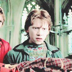 Rupert Grint, Love U So Much, Harry Potter Fandom, Fandoms, Lovers, Actors, Ron Weasley, Fandom, Actor