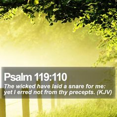 Psalm 119:110 The wicked have laid a snare for me: yet I erred not from thy precepts. (KJV)  #Scriptures #Prayer #Pastor #Amen #ChristCentered #QuoteOfTheDay http://www.bible-sms.com/