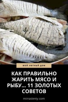 Tilapia Fish Recipes, Recipes With Fish Sauce, Paleo Fish Recipes, Diet Recipes, Fish Dishes, Seafood Dishes, Fish And Seafood, Cooking Tips, Cooking Recipes