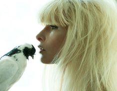 1e5f62bd8 Celebrity Photography, Artist Management, Linda Evangelista, Claudia  Schiffer, All Birds, Cindy