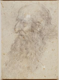 The head of an old bearded man in profile Leonardo Drew, Hooked Nose, Royal Collection Trust, High Renaissance, Peter Paul Rubens, Bearded Men, Profile, Windsor, Explore