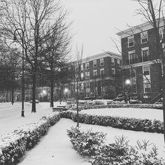 #blizzard2016 #snow #gaithersburg #maryland #blizzard #dmv