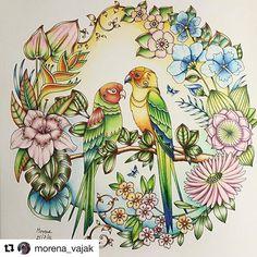 Livro: Selva Mágica (Johanna Basford)  Pintado por: @morena_vajak  #topcoloridos #pinturas #colorir #livrosdecolorir #adultoscolorindo #selvamagica #magicaljungle  #johannabasford