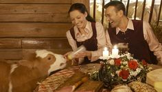 Actually Austria. Dinner in a cow shed!