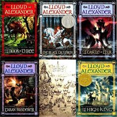Prydain Chronicles by Lloyd Alexander.  Growing up, this was my favorite series.  I still love it-- lots of adventure, excellent pacing, and fantastically developed characters.  Great for kids and adults.
