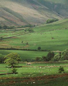 rairunphotos:  Hope Valley, UK.