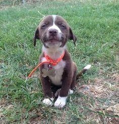 Nice Smile!