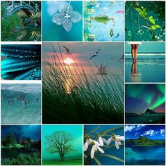 breathtaking by LHDumes - LO idea Collages, Mood Colors, Color Collage, Beautiful Collage, Green River, All Nature, Jolie Photo, Colour Board, Color Of Life