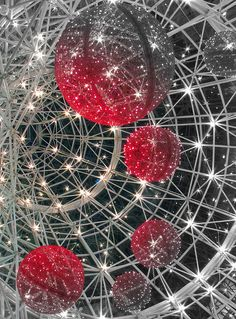 Christmas universe by Kelvin_Leong on Flickr.