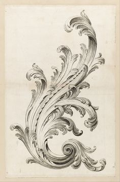From Cooper Hewitt, Smithsonian Design Museum , Alexis Peyrotte, Acanthus Leaf Design Etching on white laid paper Filigrana Tattoo, Baroque Frame, Ornament Drawing, Google Art Project, Leaf Design, Filigree Design, Motif Design, Gravure, Art Google